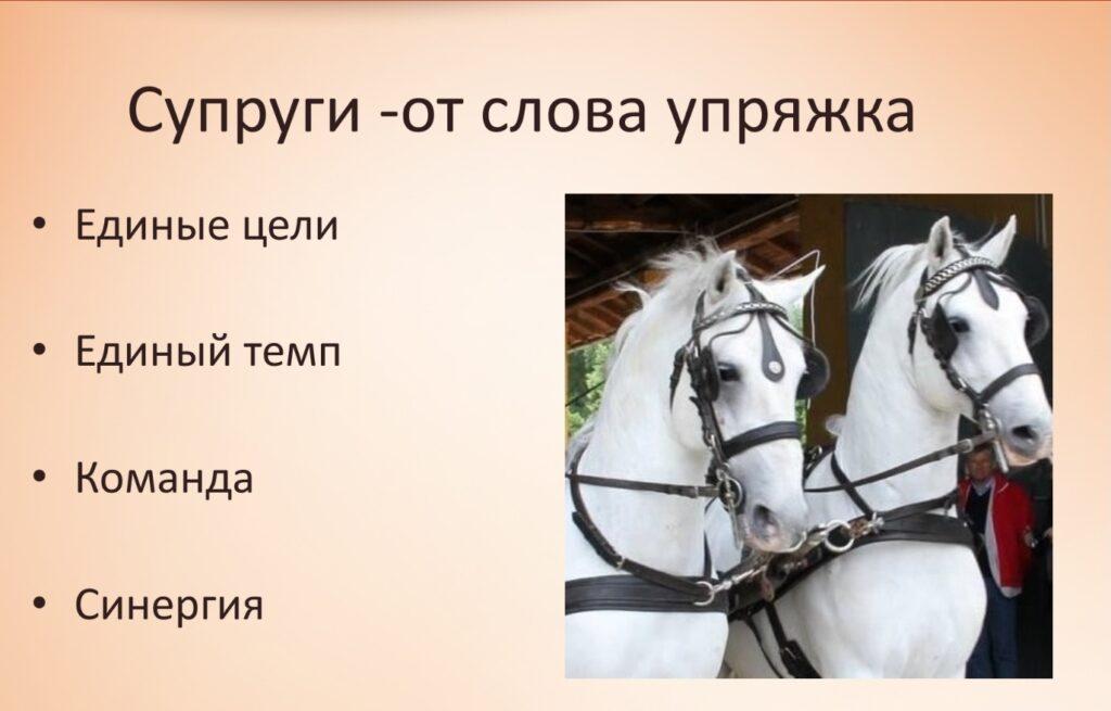 Screenshot 20210917 133742 PowerPoint